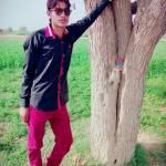 Sher Khaskali Profile Picture