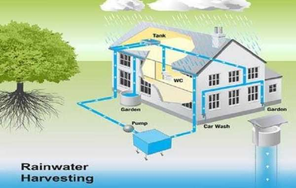 Rainwater Harvesting - Low Cost Landscape Irrigation