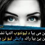 Rehmat Ullah profile picture