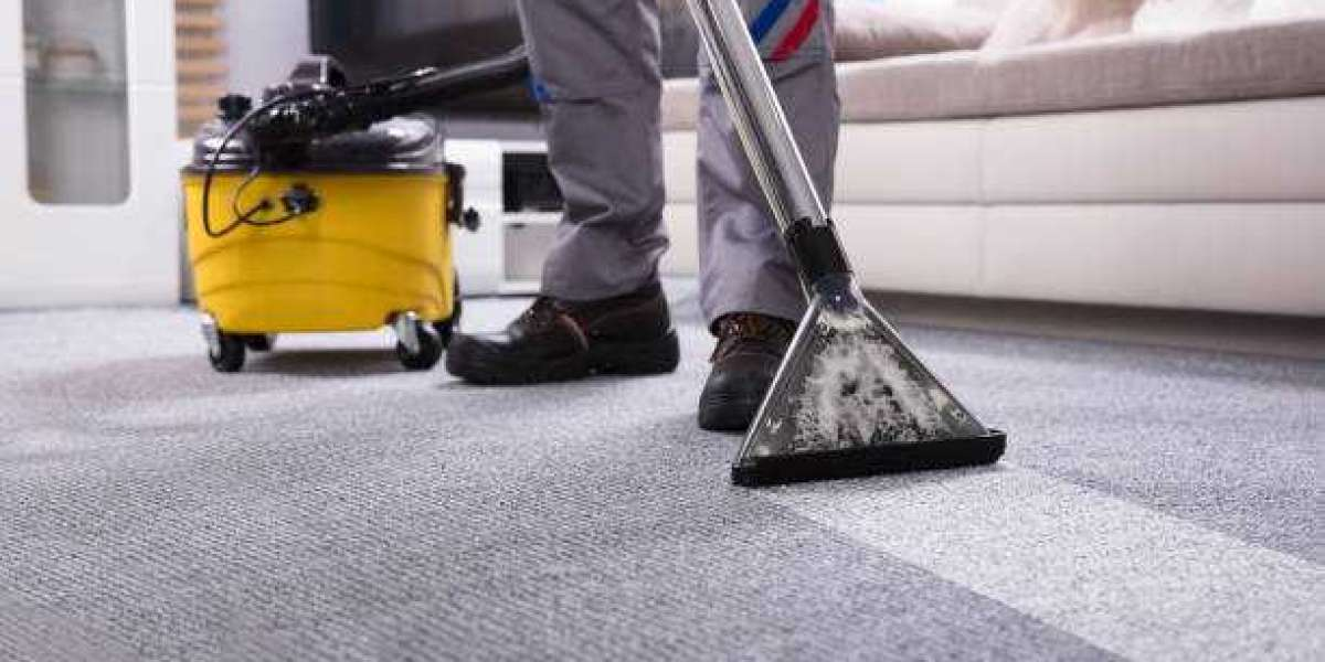 This Year Will Be The Year of Carpet Cleaning