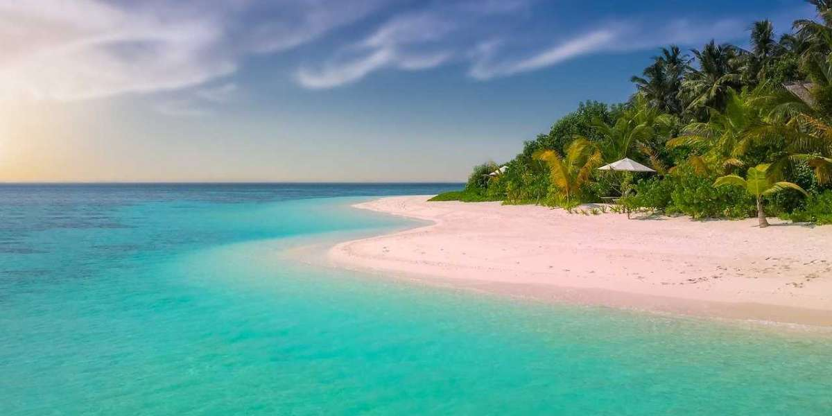Plan your trip to visit in Bahamas