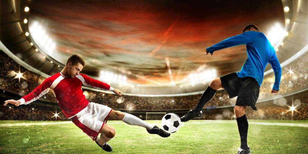 How to enhance your knowledge on  daily sports betting picks?