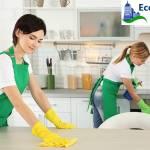 ECO's Bond Cleaning Brisbane Profile Picture