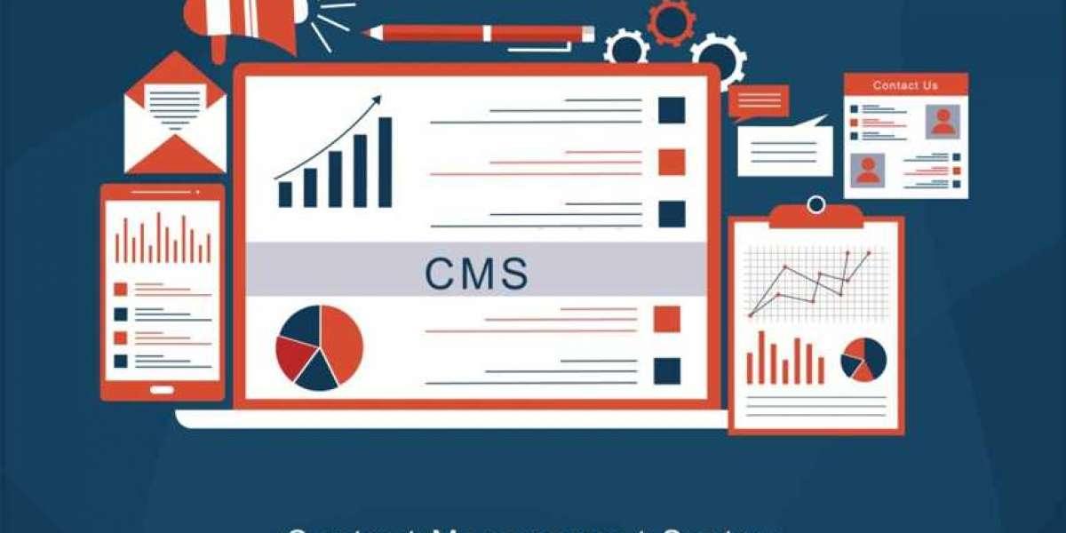 Website Designing Company in USA | Web Design Company in USA