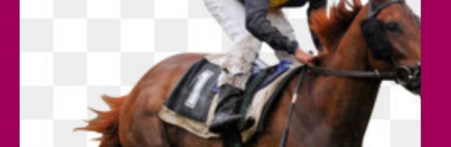 Watch Horse Racing: International Racing live stream Video Online IPTV Link Cover Image